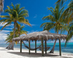 Tax Havens Promote Economic Prosperity and Protect Human Liberty