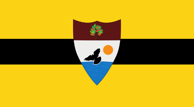 Liberland and the Libertarian Vision of a Minimal State