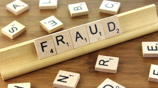 Government Fraud: A Feature, Not a Bug