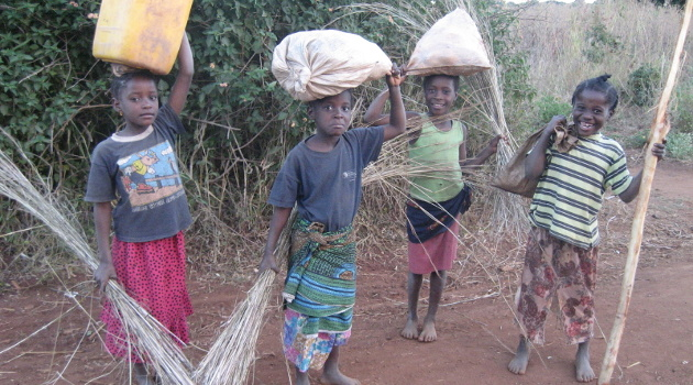 Child Labor, Economic Development, and the Folly of Good Intentions