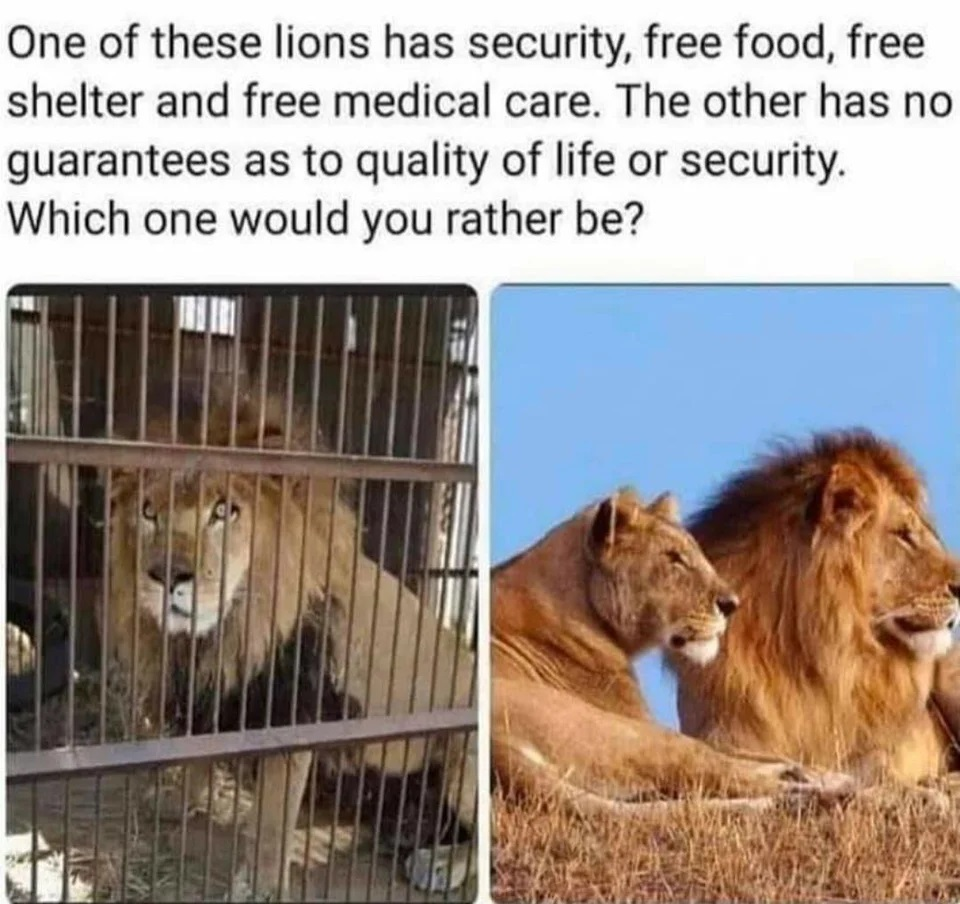 Libertarianism in Three Pictures